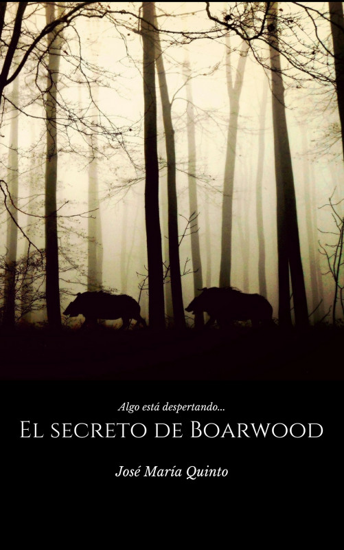 El secreto de Boarwood