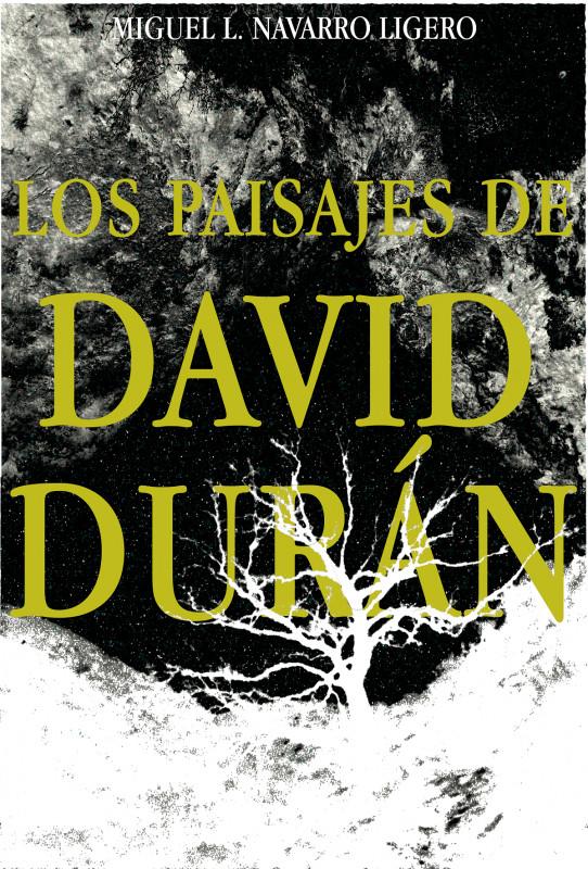 Los Paisajes de David Durán