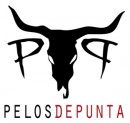 PelosDePunta