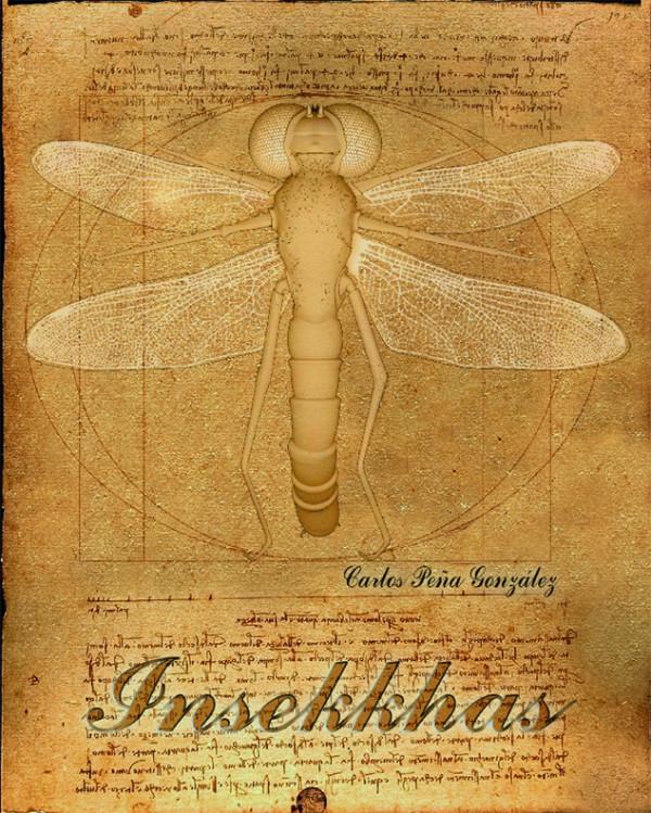 Insekkhas