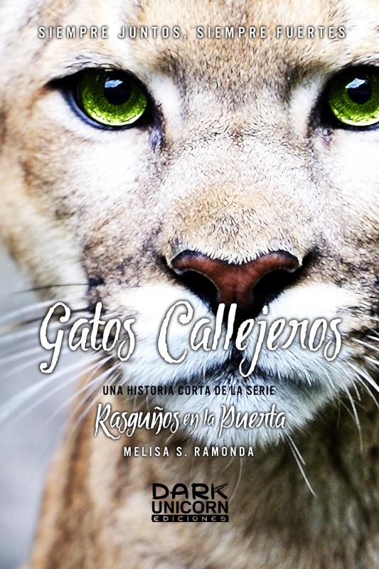 GATOS CALLEJEROS -Historia Completa-