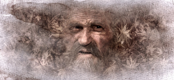 Historias del Hombre Sabio VII ( ¿Azar, Suerte, Destino? )